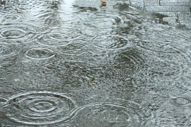 blog20200619_4 | こんな時期でもデートしたい!雨でも楽しめるデートスポット | 高級交際クラブTen Carat「10カラットブログ」