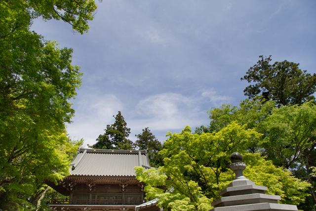 高尾山風景 | 日々の疲れを取ろう!関東にあるマイナスイオンスポット | 高級交際クラブTen Carat「10カラットコラム」