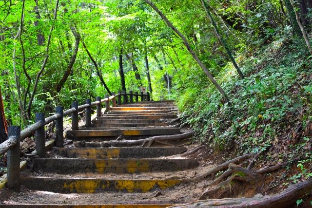 高尾山 登山道 | 日々の疲れを取ろう!関東にあるマイナスイオンスポット | 高級交際クラブTen Carat「10カラットブログ」
