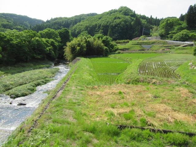 初夏の田園風景(那須郡) | アウトドアデートに利用したい、アクティビティ別おすすめスポット5選 | 高級交際クラブTen Carat「10カラットブログ」